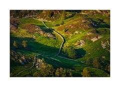 Walls (Ade G) Tags: landscape nature bracken buildings colour green light plants walls