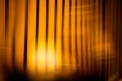 Bardo Lounge and Supper Club (Thomas Hawk) Tags: america bardo bardoloungeandsupperclub bayarea california eastbay northerncalifornia oakland sfbayarea usa unitedstates unitedstatesofamerica norcal restaurant