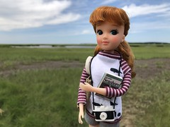 Hiking in the salt marsh (Foxy Belle) Tags: sew book shirt shorts tourist shortscape cod vacation ma nina ballerina 1975 by tomy yukkochan licca body sea ocean hand made summer field guide miniature