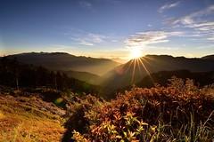 @Hehuanshan_合歡山 (monbydick) Tags: hehuanshan hehuanmountain nikond750 nikon tamron1530mmf28 taiwan formosataiwan sunrise mountains monbydick 合歡山 克難關 日出