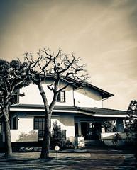 (carbone_gabriele) Tags: shadow bew black blackandwhite bianc white sprectel artist architecture art structure street photos
