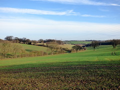 Photo of GOC Hemel Hempstead 049: Landscape view
