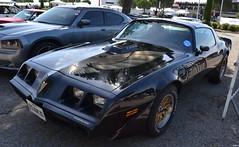 PONTIAC Firebird Trans Am (2ème génération) - 1979 (SASSAchris) Tags: pontiac firebird trans am 2ème génération voiture américaine castellet circuit 10000 tours ricard auto httt htttcircuitpaulricard htttcircuitducastellet 10000toursducastellet transam 2èmegénération