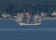 Barque Europa in Öresund (frankmh) Tags: ship tallship europa öresund
