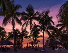Islamorada (Thüncher Photography) Tags: fujifilm gfx50s mediumformat scenic landscape waterscape sky clouds colors beach tropical palmtrees sunset floridakeys silhouettes fineartphotography islands