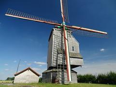 Moulin Deschodt à Wormhout. (daviddelattre) Tags: moulin haie maison ciel bleu nuage photo patrimoine