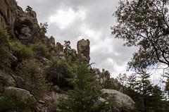 Bonita Canyon Landscape 3 (rschnaible (Off Back Soon)) Tags: arizona us usa southwest desert chiricahua national monument landscape outdoor mountains forest trees bonita canyon