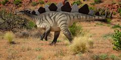 Ya Like My Plates (Ken Krach Photography) Tags: utah dinosaur