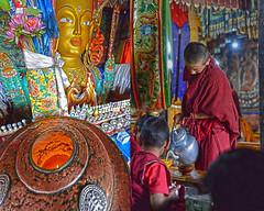 Scenes from Thiksey Monastery (JKIESECKER) Tags: religion religiousceremony buddhistmonastery buddhism portrait people peopleportraits streetscenes statues india lehindia lehladakh