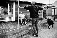 Images on the run.... (Sean Bodin Images) Tags: hundested nordsjælland visitnordsjælland lynæs streetphotography streetlife seanbodin streetportrait people photojournalism photography politiken reportage denmark documentary danmark dmjx everydaylife fangdinby