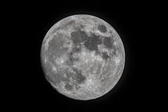 Moon_2019.07.15 (ko1fun) Tags: d850 tsa120 mach1