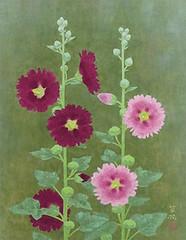 Hollyhock (Japanese Flower and Bird Art) Tags: flower hollyhock alcea rosea malvaceae kayo yamaguchi modern painting japan japanese art readercollection
