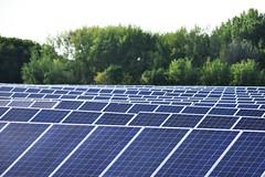 Solar field (U.S. Fish and Wildlife Service - Midwest Region) Tags: solar power energy minnesota mn july 2019 summer landscape