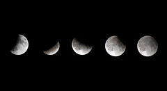 lunar eclipse (sean and nina) Tags: fullmoon night nature moon sky outdoors black white lunar astronomy crater outerspace planet rocky space pictures roomartpaintings printable poster canvaspicture homedecorprints muralphotos posters photoprint fineartprints interiordecoration