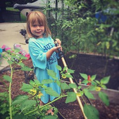 Now With Norah (matthewkaz) Tags: norah daughter child garden gardens gardening tomatoes watering tomatillos plants summer home house burcham eastlansing michigan 2019
