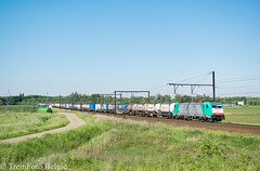 LINΞΛS 2827 Ekeren (TreinFoto België) Tags: 2827 alpha trains traxx bombardier f140 ms 186 219 br ekeren lijn 27a 40244 gallarate oorderen hupac aachenwest antwerpennoord lineas belgië belgien belgium belgique