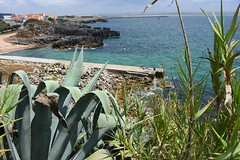 beach-3990 (Pixel Peasant) Tags: peniche portugal