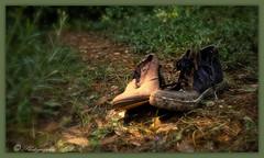 17.07.2019ChaussuresAbandonées (tuckerplr) Tags: france valbonne alpesmaritimes forest lost shoes paca foret chemin chaussures abandonnées nature terre perdu sud