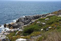 rock-shore-3972 (Pixel Peasant) Tags: peniche portugal