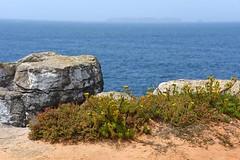 reserva-natural-das-berlengas-4051 (Pixel Peasant) Tags: peniche portugal