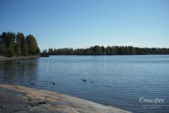 DSC01418 (omnosfire) Tags: helsinki landscape cityscape urbanphotography urban finland helsinkicity arabia arabiaranta sea water nature nauturephotography city finnish munkkiniemi sonyalpha7ii sony