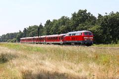 DB Fahrwegdienste 218 483-6 Überführung BR628, Graben (michaelgoll777) Tags: db br218 v160