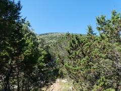 Monte Osor isola di Lussino - Croazia  (23) (Naturalmentescienza) Tags: versante