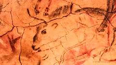 De si nombreuses peintures...combien d'animaux voyez vous ? (So many paintings...How many animals can you see ?) (Larch) Tags: painting peinture grotte cave altamira grottedaltamira altamiracave reproduction animals animaux couleurs colours art préhistoire prehistory foule crowd santillanadelmar cantabrie cantabria espagne spain bison
