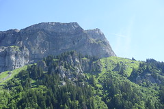Hike to Chalets de Varan (*_*) Tags: hiking mountain montagne nature randonnee trail sentier walk marche europe france hautesavoie 74 savoie passy 2019 june morning matin summer ete sunny
