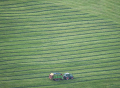 Step By Step (CoolMcFlash) Tags: negativespace copyspace field green nature tractor lines farmer fujifilm xt2 minimalistic minimalism minimalistisch feld grün natur work traktor linien grass gras landwirtschaft agriculture fotografie photography xf100400mmf4556 r lm ois wr