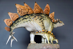 Stegosaurus | Statue | Sideshow Collectibles (leadin2) Tags: stegosaurus statue canon 2018 dinosaur dinosauria exclusive sideshow collection diorama
