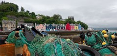 DSC01822 (James Ito) Tags: mull places scotland tobermory