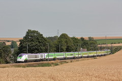 TGV TMST 3224/3213 IZY / Feuchy (jObiwannn) Tags: tmst tgv izy train ferroviaire locomotive