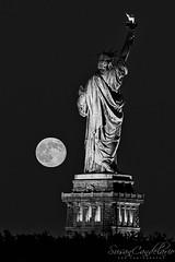 Statue Of Liberty Moon Rise BW (Susan Candelario) Tags: cityscapes eastriver ellisisland ladyliberty libertystatepark manhattan moons ny nyc newjersey newyork newyorkcity statue supermoon susancandelario usa blue bluehour cities cityscape dusk freedom fullmoon harbor howl iconic immigrants landmark liberty libertyisland moon moonrise moonscape moonscapes patriotic patriotism rise rises rising sky statueofliberty supermoons symbol tourism travel twilight unitesstatesofamerica urban urbanlandscape urbanlandscapes