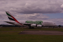 IMGP6018 A388 A6-EEZ GLA/EGPF (fergusabraham) Tags: glasgowinternational gla egpf a6eez a380 a388 uae emirates airbus
