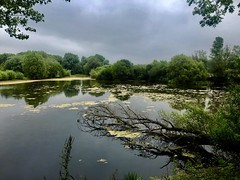(z.trnk8) Tags: beautifulnature views england cotswolds lake nature darkness