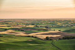 View from Steptoe Butte - East Washington State (Wayne~Chadwick) Tags: 2019summerpentax palouse steptoe butte