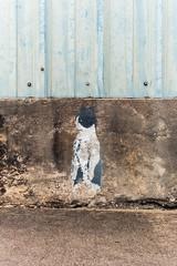EPSN0216 (alexdotbarber) Tags: coolidge epsonrd1 houston voigtlandernoktonclassic35mmf14 cat digitalrangefinder f8 manualfocus rangefinder stencil streetart