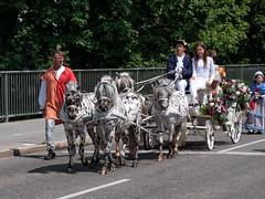 Tänzelfest Kaufbeuren 2019 (berndkru) Tags: leicadg1260f2840 objektiv panasonicdcg9 tänzelfest kaufbeuren bayern bavaria historisch historical kinder children event festival pferde horses