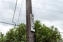 EPSN0219 (alexdotbarber) Tags: epsonrd1 houston voigtlandernoktonclassic35mmf14 wiley digitalrangefinder f2 love manualfocus rangefinder streetart