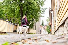 Street view in Kuopio (VisitLakeland) Tags: finland kuopio kuopiotahko lakeland summer animal dog eläin kaupunki keskusta kesä koira luonto outdoor sekarotuinen street streetview