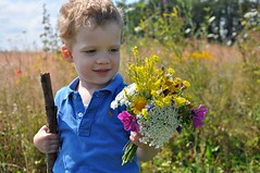 So schöne Blumen (Uli He - Fotofee) Tags: ulrike ulrikehe uli ulihe ulrikehergert hergert nikon nikond90 fotofee feld flur blumen sommer juli kind kinder enkelkind gartengottes gottesgarten