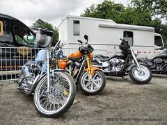 Motorrad Harley Davidson (linie305) Tags: recklinghausen germany deutschland nrw nordrheinwestfalen vestlandhalle saatbruch ruhrgebiet ruhrarea kohlenpott pott chrom flammen chromflammenshow 2019 motorrad zweirad kraftrad motorbike motorcycle krad harley davidson