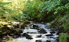 River Lyn - Devon (Mark Wordy) Tags: riverlyn devon boulders rapids