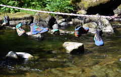 The Hanging Hiking Boots over the River Lyn (Mark Wordy) Tags: riverlyn devon hikingboots shoes hangingonarope