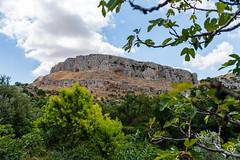 DSC_5207 (Gér@ld) Tags: tunisia nikon d7500 nature djebba landscape