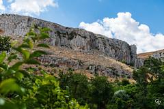 DSC_5196 (Gér@ld) Tags: tunisia nikon d7500 nature djebba landscape