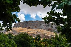 DSC_5235 (Gér@ld) Tags: tunisia nikon d7500 nature djebba landscape