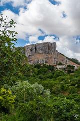 DSC_5198 (Gér@ld) Tags: tunisia nikon d7500 nature djebba landscape