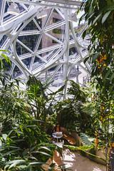 Amazon Spheres 2019 - 04 ([50storms]) Tags: canon6d canon2470mmf28l vsco vscofilm04 seattle washington pnw pacificnorthwest amazon amazonspheres landscapearchitecture architecture design plants garden